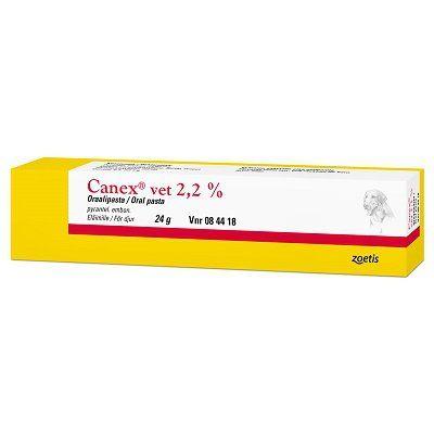CANEX VET 2,2 % oraalipasta 24 g